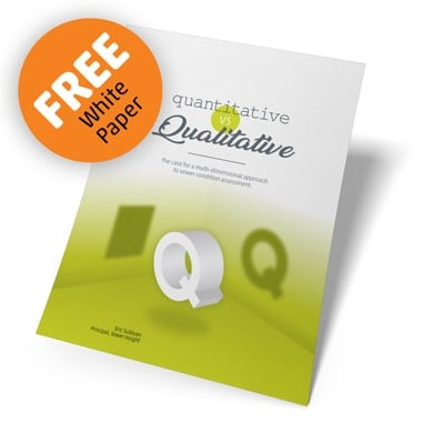 FREE Qualitative Analysis White Paper