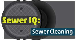 Play Sewer IQ: Cleaning Edition